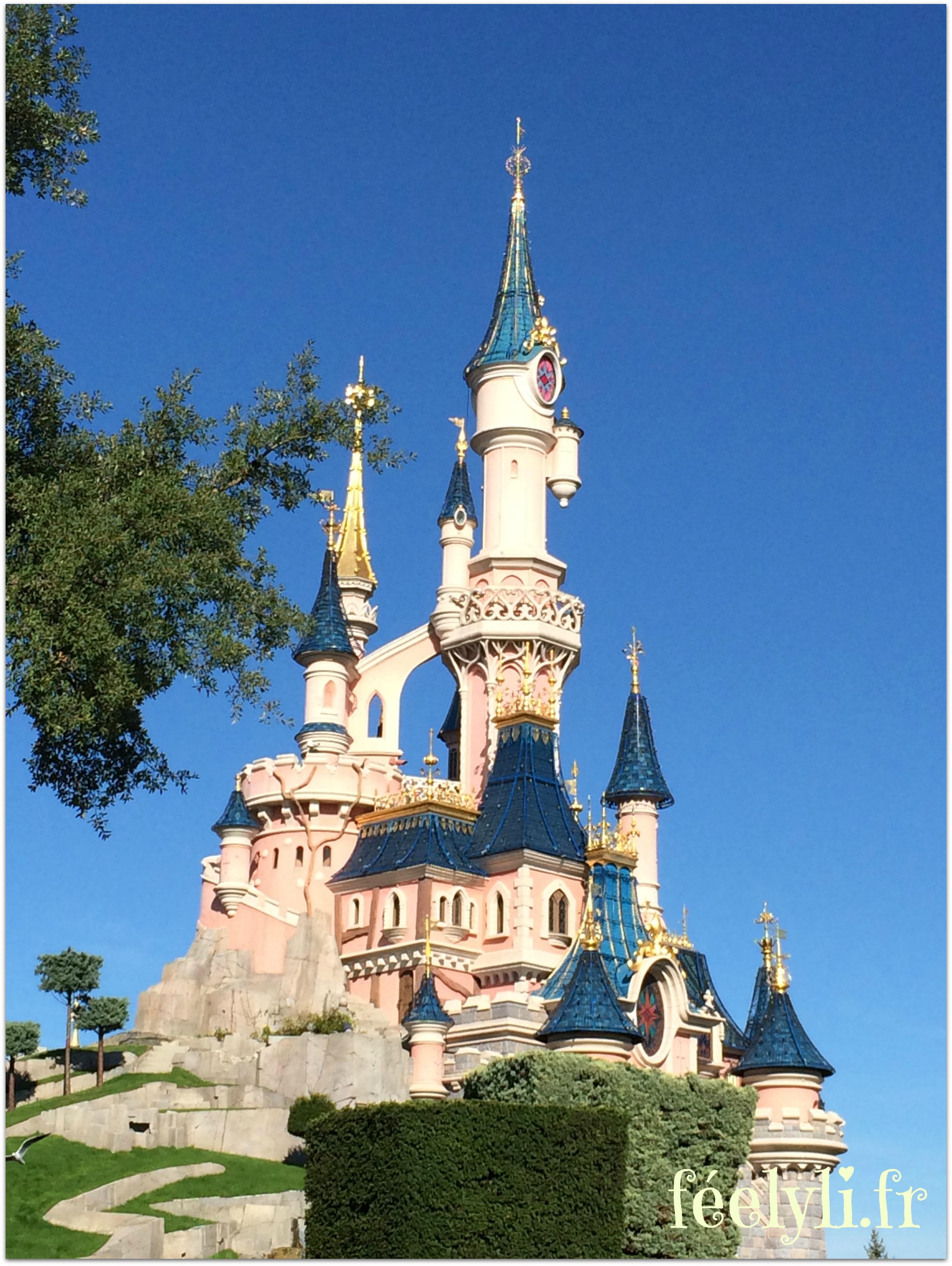 château de la belle au bois dormantt