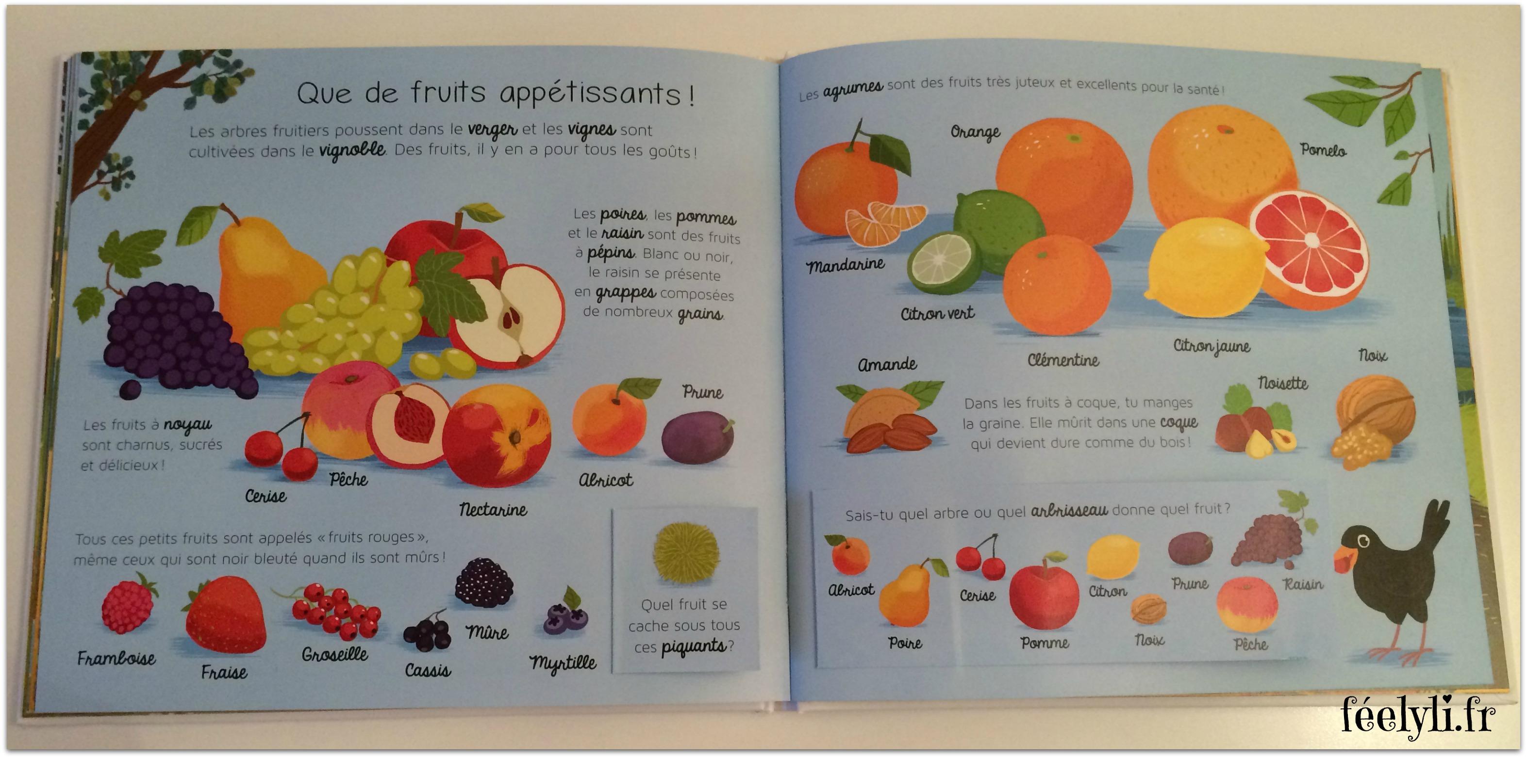 les fruits - larousse