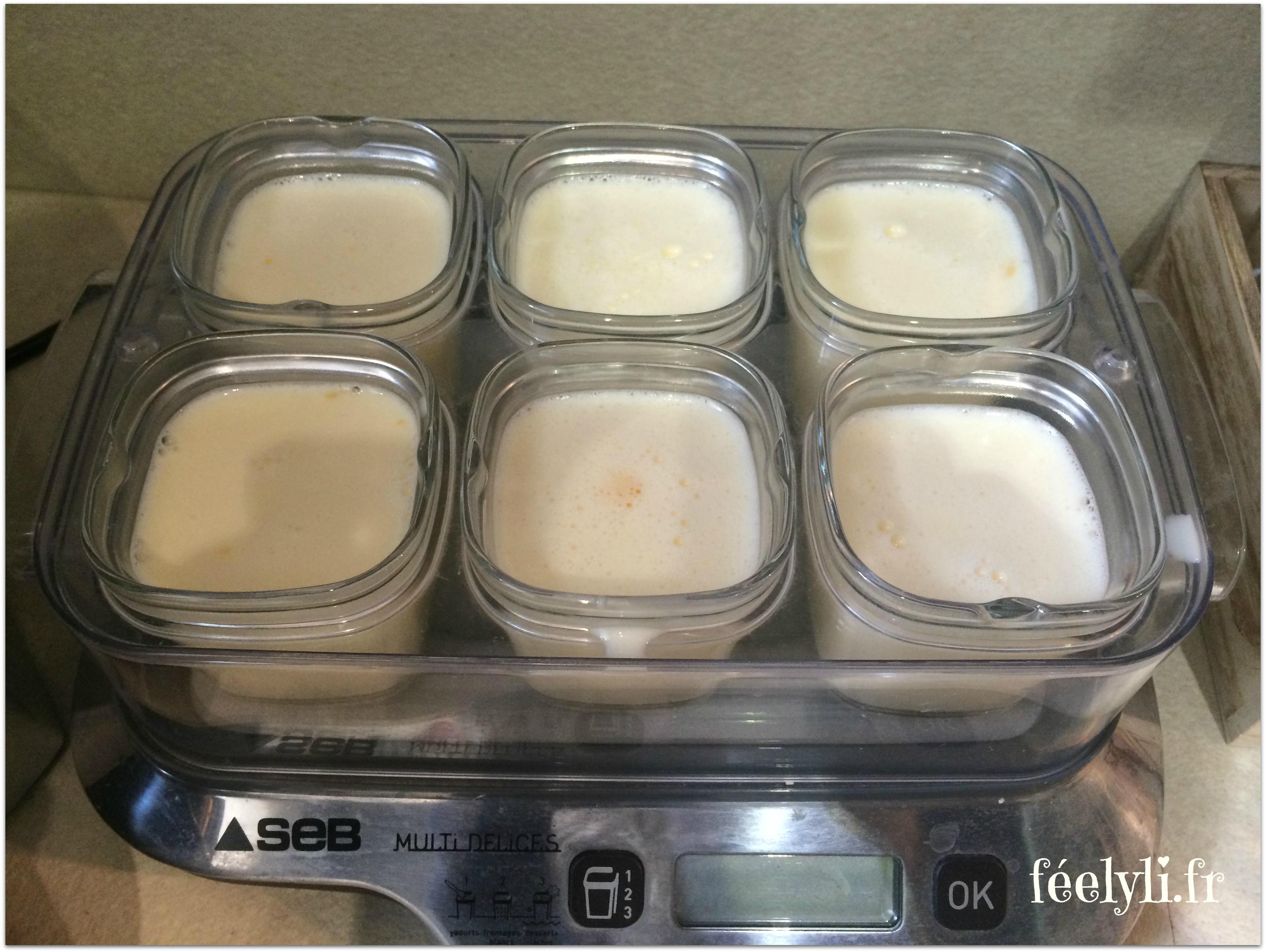 crèmes aux oeufs