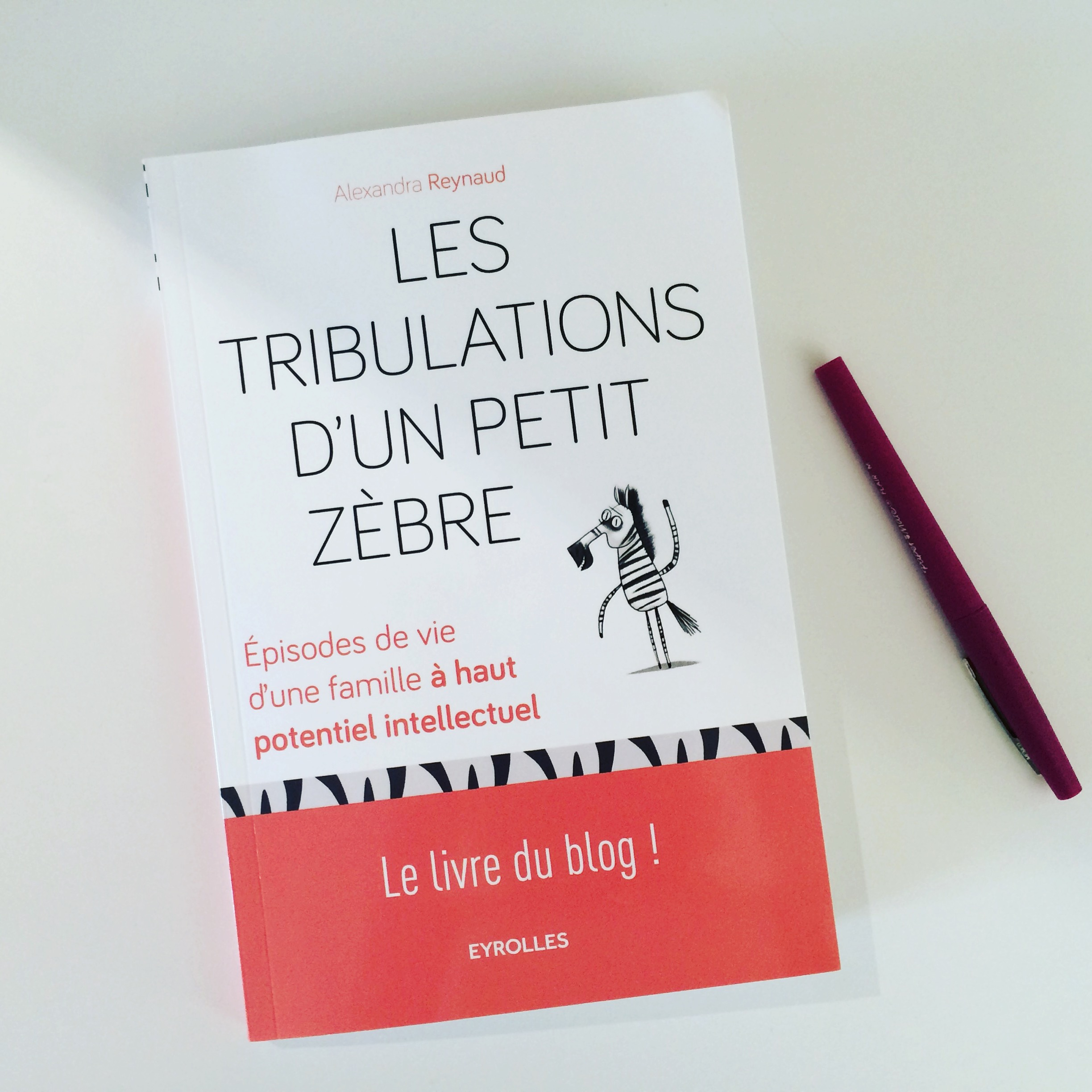 les_tribulations_dun_petit_zebre