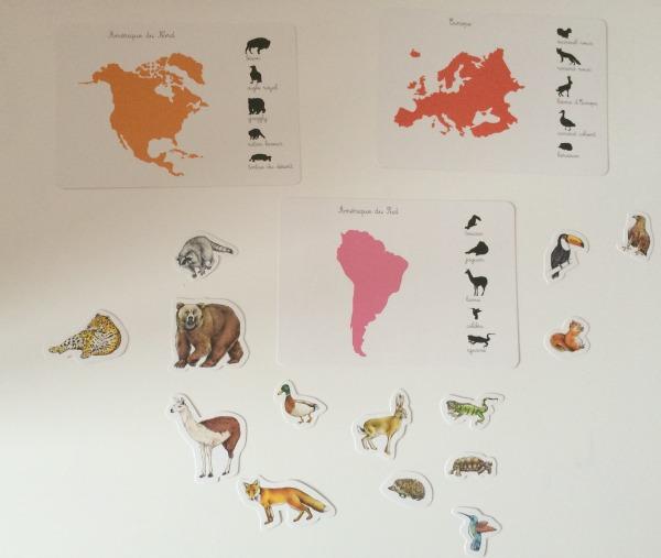 les_animaux_des_continents_montessori