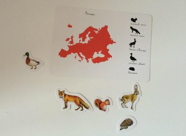 les_animaux_des_continents_montessori2