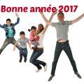 bonne_annee2017bis